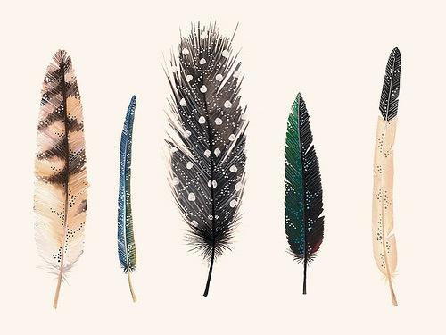 Assez Symboliques Amérindiennes MW13